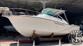 Lancha a venda Sedna 335 XF barco usado seminovo do estaleiro Sedna casco da Fighter 33 Carbrasmar